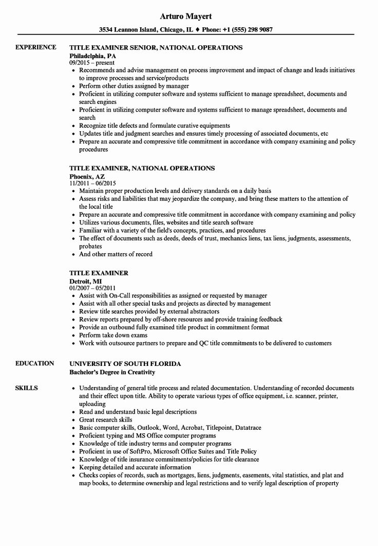 Examples Of Resume Titles Beautiful Title Examiner Resume