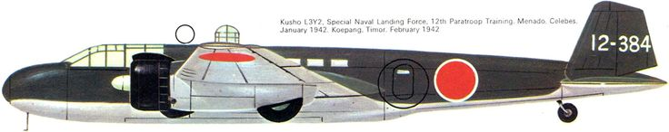 Kusho L3Y2 / Special Naval Landing Force, 12th Paratroop Training // Mendao, Celebes, January 1942. Koepang, Timor, February 1942.