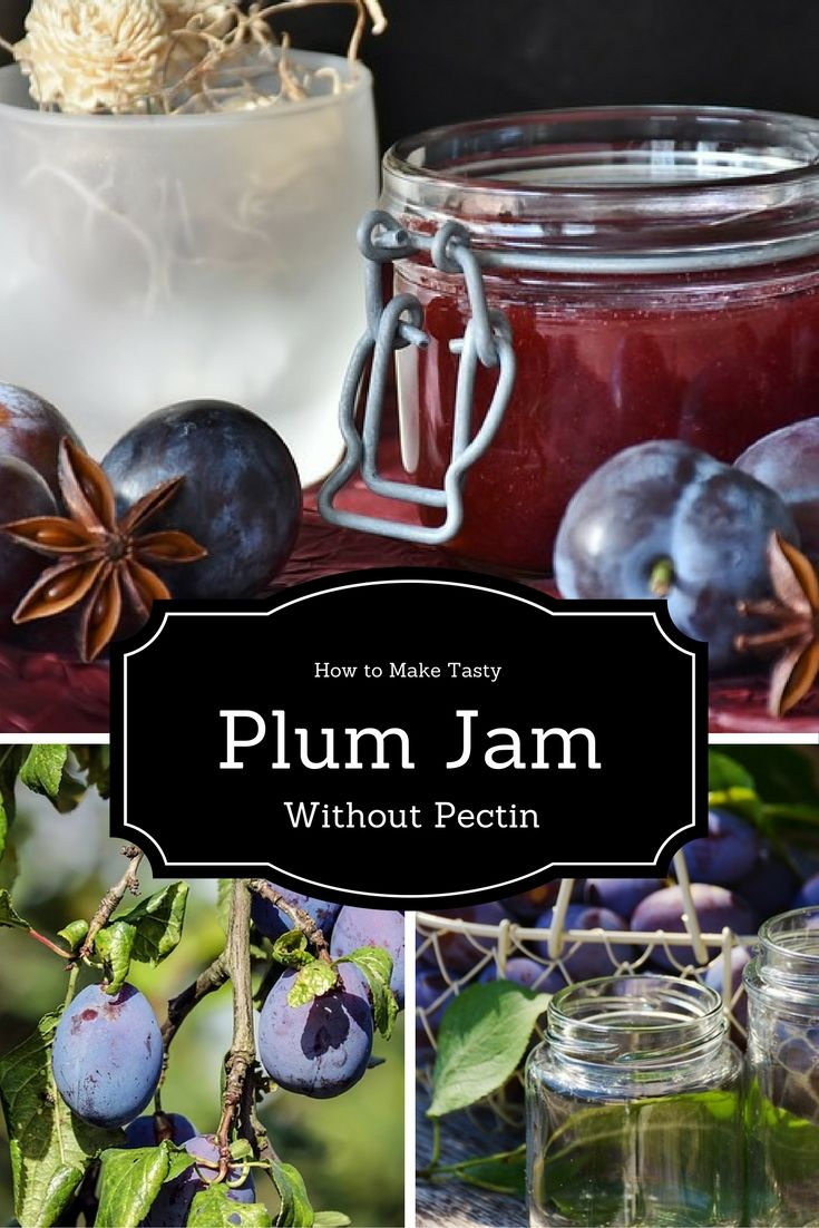 22 best images about fruit preserves on pinterest gooseberry jam blueberry syrup and the jar - Jam without boiling easy made flavorful ...