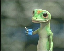 Geico Quotes 30 Best Geico Images On Pinterest  Geckos Cry And Tv Ads