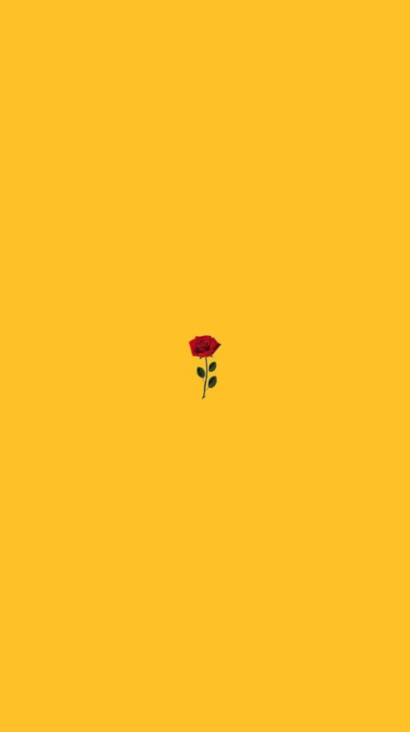Plain Yellow Background With A Red Rose In The Middle Cute