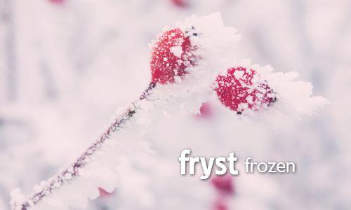 fryst