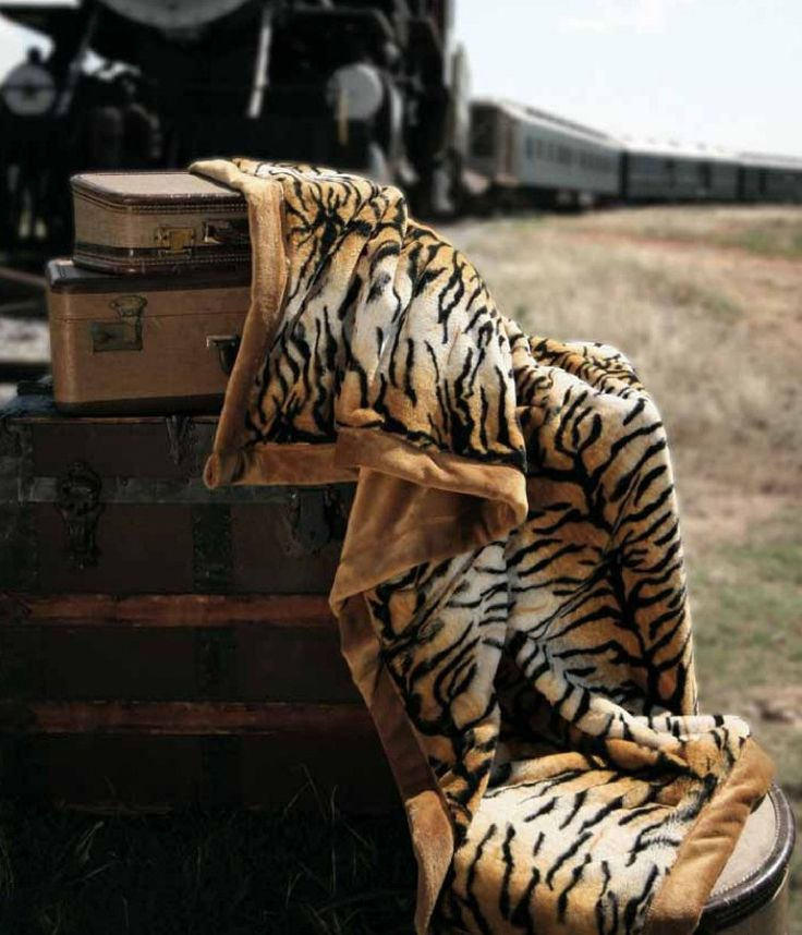 11 Best Tiger Blankets Images On Pinterest