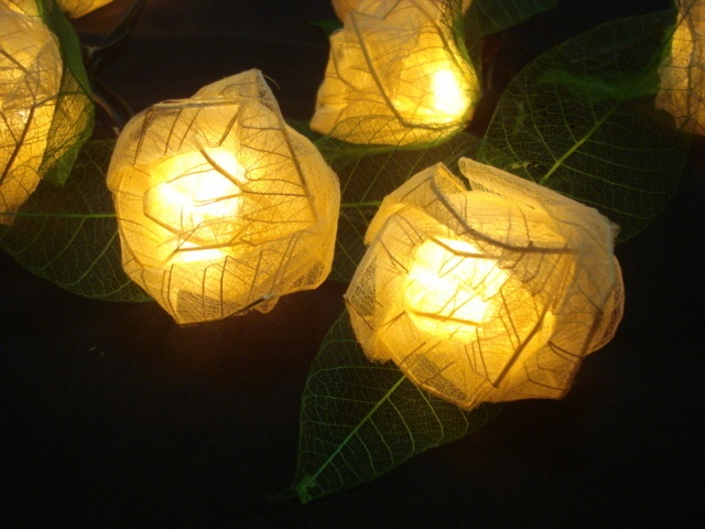 White Rose string lights are made with the skeletons of real leaves, their leaves react to moisture! Spray with water and the flowers bloom right before your eyes!!