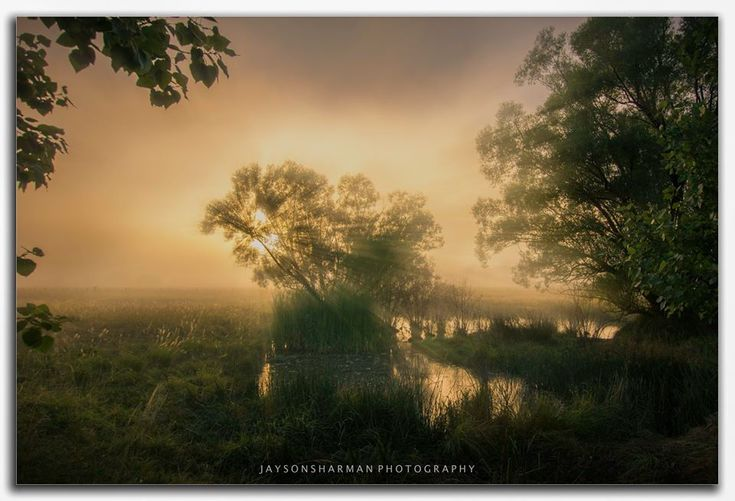 A misty morning at Reddestone Creek. Emmaville Road.  Photo by Jayson Sharman Photography.   Sunday's forecast in the Glen Innes Highlands includes a maximum temperature of 31 degrees with afternoon thunderstorms.