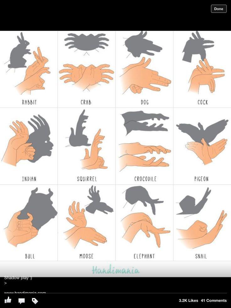 Schaduwdieren