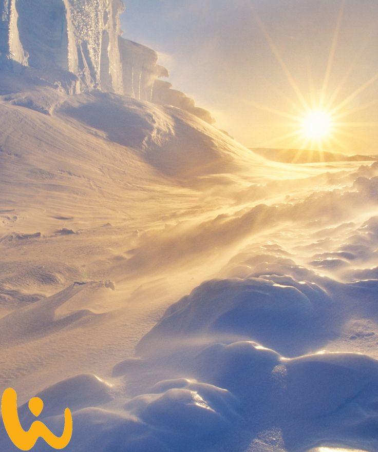Die Natur!! Das schönste Geschenk der Erde!! #snow #schnee #sonne #warm #kalt #erlebnisreisen #wiirodive #watte #knirsch #tauchreisen #wow #unvergesslich #atemberaubend #antarktis #waswillmanmehr