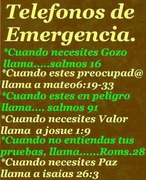 Best 25+ Bible Emergency Numbers Ideas Only On Pinterest