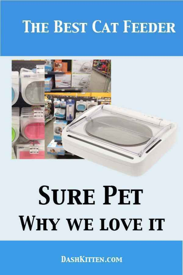 The Sure Pet feeder is just the best at keeping food from for your cat. The lid is automated and our review gives you all the positives you need to hear PLUS some tips on the microwave feeder for special feed kitties. #cats #catfeeders #IoT #healthycats #feeders