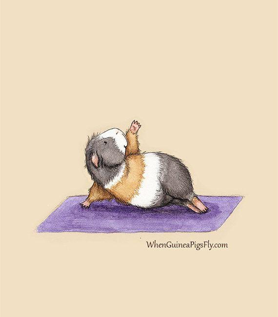 Yoguineas  Side Plank  Cute Guinea Pig Yoga by WhenGuineaPigsFly, $18.00  so cute!!