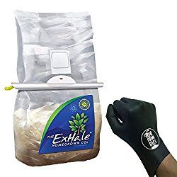 MORE REVIEWS AT: https://morninghomestead.com/best-co2-bags-reviews/ ===SEARCH TERMS: co2 hangi bag co2 bag instructions co2 impermeable bags co2 in bags exhale co2 bags instructions my co2 bag instructions co2 bag info co2 bag kohlendioxid co2 bag kaufen co2bag käyttö exhale co2 bags kaufen co2 bag kohlendioxid-tüte co2 lift bag large co2 bags co2 mushroom bags co2 laser malar bags co2 fractional laser malar bags natural co2 bags bags of co2 co2bag ohjeet