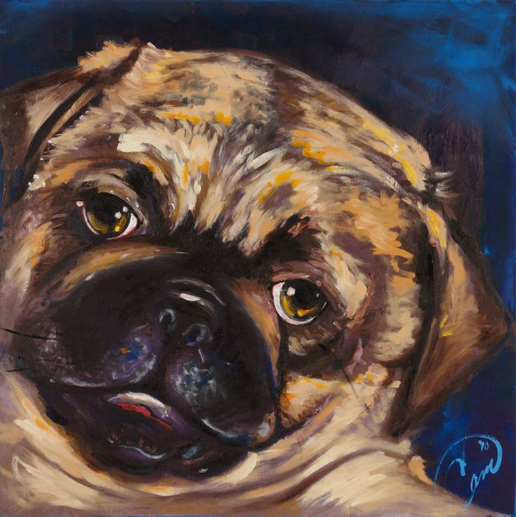 Jack, the adorable pug puppy. Oil on panel commission work. Allow me to create your puppy in oil. View more works of puppy art at www.camtheartist.com