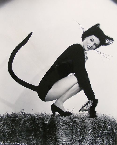 Vintage Pin Up Halloween Costumes