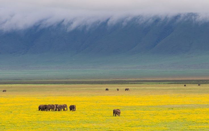 10 of the World's great natural wonders - in pictures