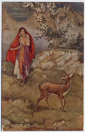Sita Sees The Magic Deer, Evelyn Paul, Illustrator.