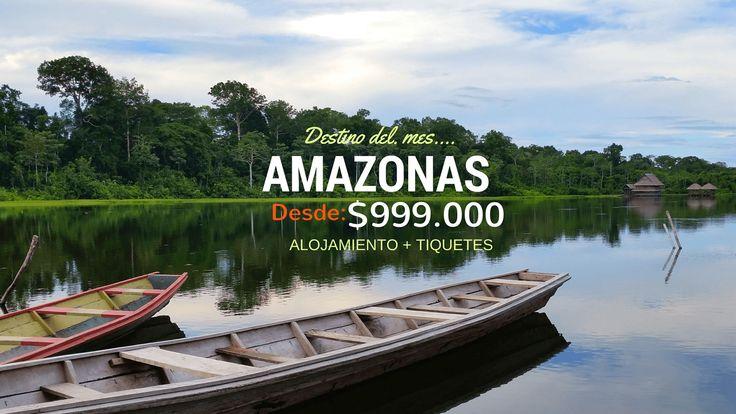 Viajar al #amazonas #colombiano es posible con calidad y altura http://amazonas.siemprecolombia.info/tours/amazonas-tradicional/