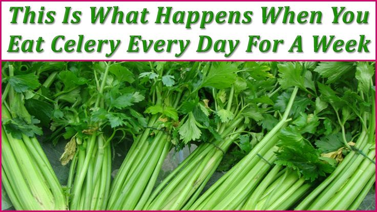 The celery has been used as a herbal remedy by the Greeks and Egyptians since a long time ago. This vegetable includes amazing medicinal and dietary characteristics, however a lot of people are not aware about its benefits it has. That is why in this article we are going to tell you more. Read theRead More