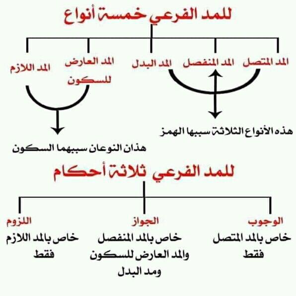 Pin By سنا الحمداني On أهل الله وخاصته Islamic Quotes Quran Learn Quran Muslim Book
