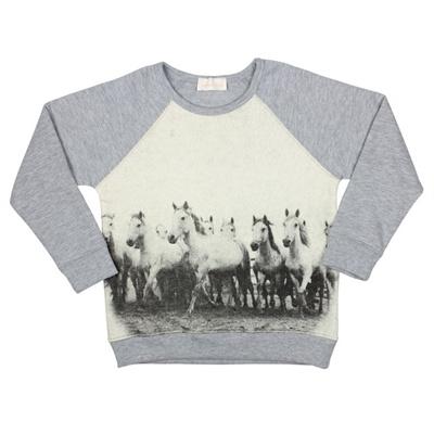 Mooie grijze sweater van Simple kids met leuke print van paarden.