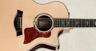 Taylor 814ce. Gosh, but I love this guitar.