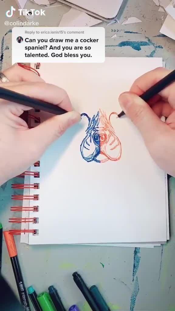 Cute Cocker Spaniel Dog Portrait Drawing Tiktok Video In 2021 Dog Portrait Drawing Art Drawings Sketches Creative Cute Sketches