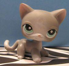 lps shorthair light gray cat    2013-