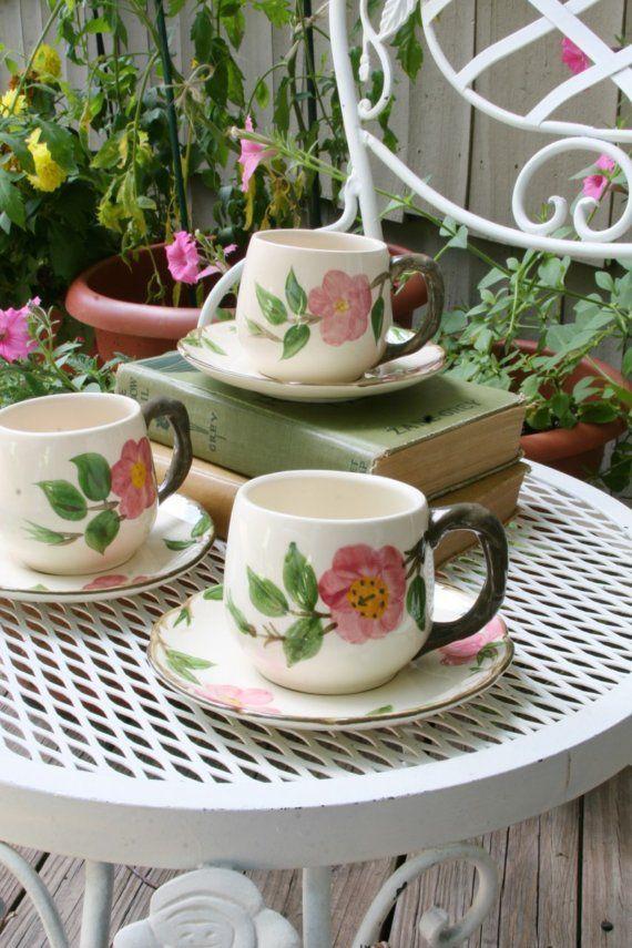 75 best Franciscan desert rose images on Pinterest | Desert rose ...