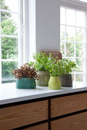 「Botanica ボタニカ」キッチンのハーブのポットとして。落ち着きのある6色は優しいシェイプで自然な色の組み合わせも考えられている。