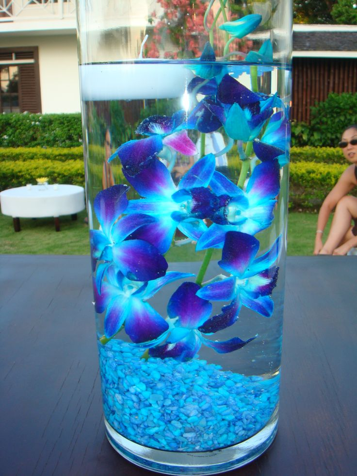 Blue dendrobium orchids submerged in water Designed by ...