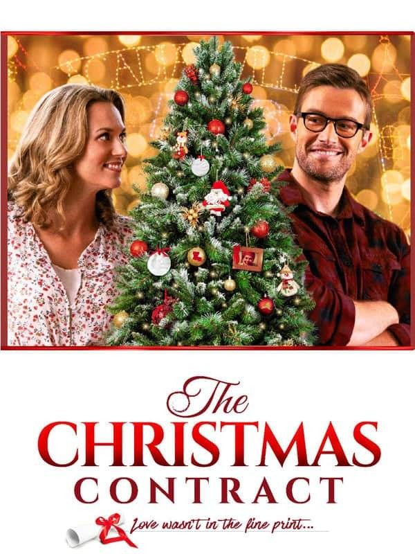 Pin By Celine Thefan On Film De Noel In 2020 Christmas Movies Contract Movie Hallmark Movies