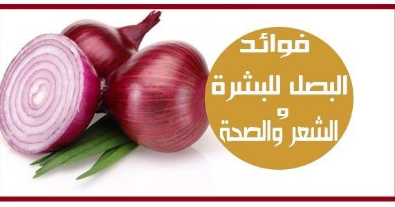 يزرع البصل ويستهلك في جميع أنحاء العالم وعادة ما يتم تقديمه مطبوخ ويمكن أيضا أن يؤكل نيئ ويستخدم في المخللات والصلصات البصل له طعم قوي ونكهة حا Onion Vegetables