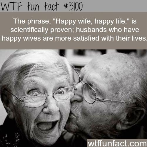 Fun Wife Meme : Quot happy wife life wtf fun facts