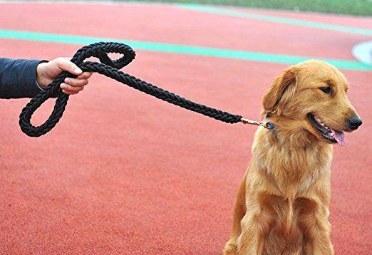 La Vogue-Guinzaglio per Animale Domestico Resistente Corda per Cane Diametro 2cm Nero: Amazon.it: Giochi e giocattoli