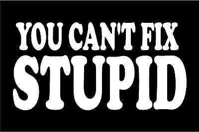 Details About You Can T Fix Stupid Decal Funny Saying Car