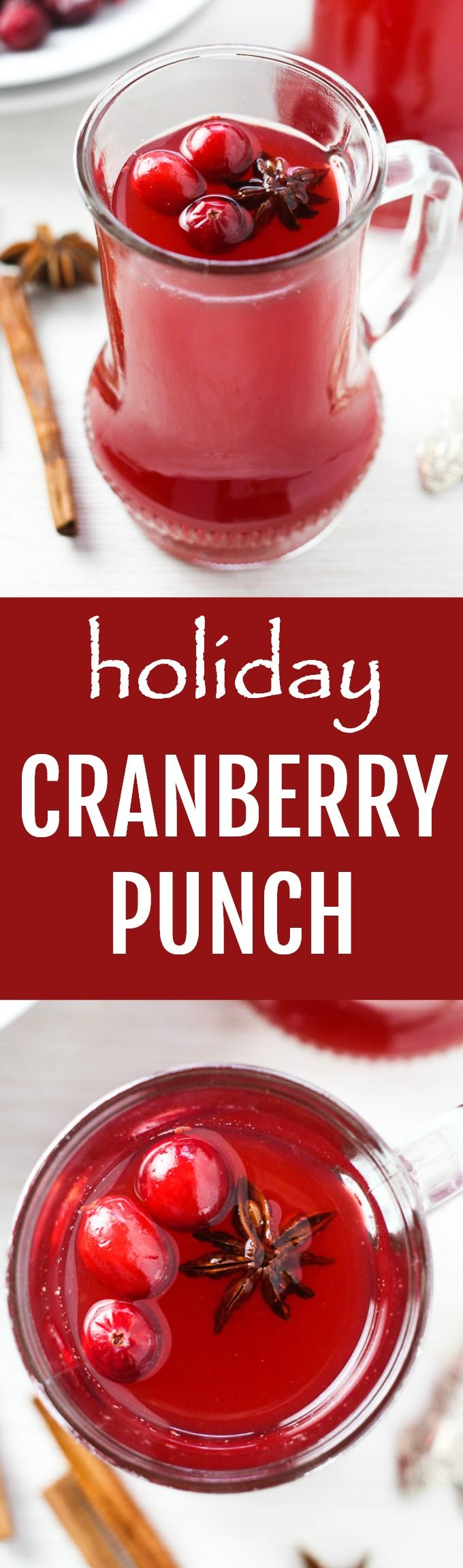 Best 25 vodka punch ideas on pinterest christmas punch for Drink recipes without alcohol
