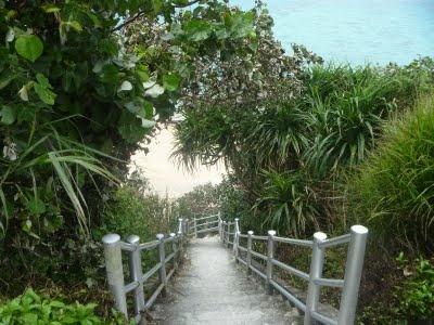 Okinawa...was born here, would love to go back and visit.Okinawa Wa Born, Favorite Places, Okinawa Japan, Okinawa Ryukyu, Beautiful Places, Places I D, Hello Japan, Assorted Places, Random Pin