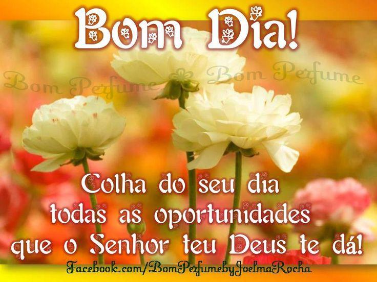 www.bom dia amigos do face book.com | BOM DIA ;TENHA UMA ÓTIMA QUARTA-FEIRA
