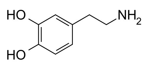 Dopamine molecule. Because I'm a chemistry nerd, and also because my mom suffers from Parkinson's Disease, which is marked by the decline of dopamine-generating cells in the brain. When she doesn't have enough I would always have that little bit extra for her