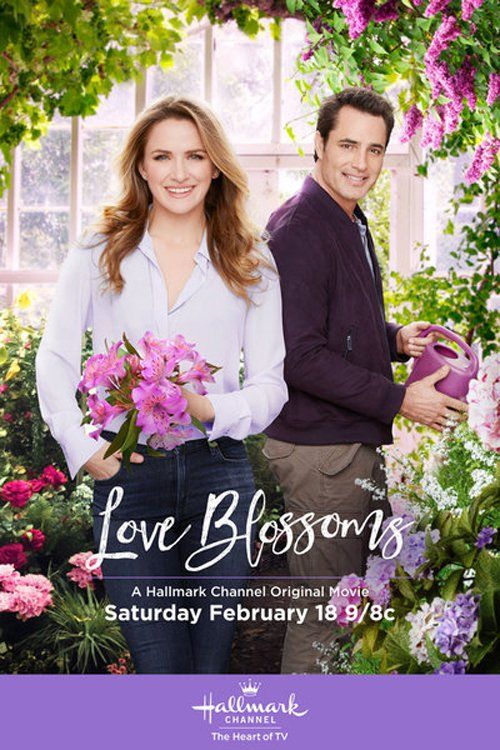 Watch Love Blossoms Full Movie Online
