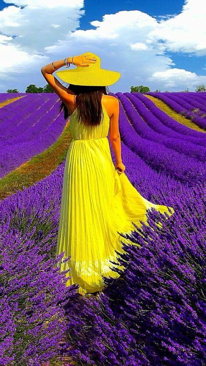 What joy it must be and think if the wisp of lavender when her yellow dress touches the lavender!! wow !