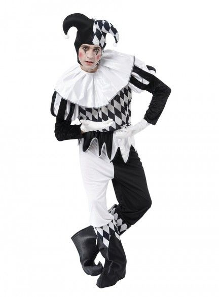 Harlequin Male