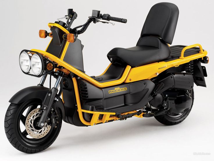 Ruckus, Honda. For the tomboy every girl has in it.