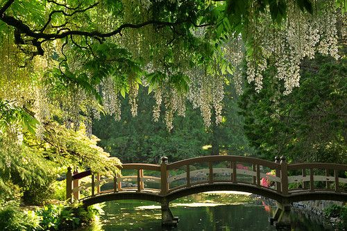 Quiet bridge