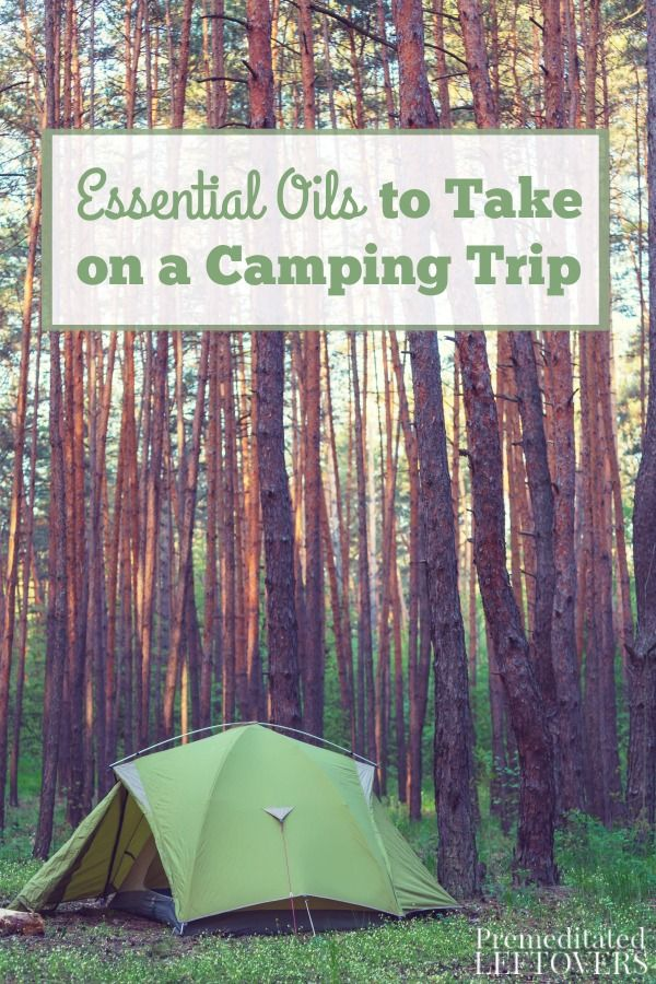 Essential Oils to Take on a Camping Trip- Pack these essential oils on your next camping trip to repel insects, reduce nausea, and help you sleep better