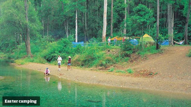 QUEENSLAND (Sunshine Coast): Conondale National Park - in behind the Sunshine Coast Hinderland in Qld. Magnificent forests, deep gorges and spectacular views, this park offers walking tracks, scenic drives and grassy camp sites near rainforests and mountain streams. The popular Booloumba Creek camping areas are now part of Conondale National Park.  (Google Image Result for http://resources0.news.com.au/images/2012/03/09/1226295/091264-family-camping-booloumba-creek.jpg)