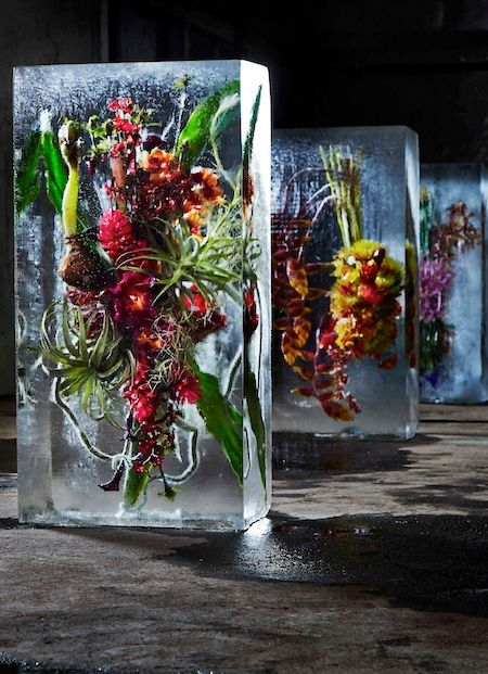 Makoto Azuma - Iced Flowers ... ❃∘❃✤ॐ ♥..⭐.. ▾ ๑♡ஜ ℓv ஜ ᘡlvᘡ༺✿ ☾♡ ♥ ♫ La-la-la Bonne vie ♪ ❥•*`*•❥ ♥❀ ♢❃∘❃♦ ♡ ❊ ** Have a Nice Day! ** ❊ ღ‿ ❀♥❃∘❃ ~ Fr 18th Dec 2015 ... ~ ❤♡༻ ☆༺❀ .•` ✿⊱ ♡༻