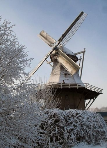 Flour mill, De Heidebloem, Erica, the Netherlands.