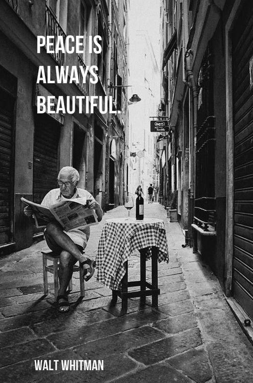 """Peace is always beautiful."""" ― Walt Whitman"""