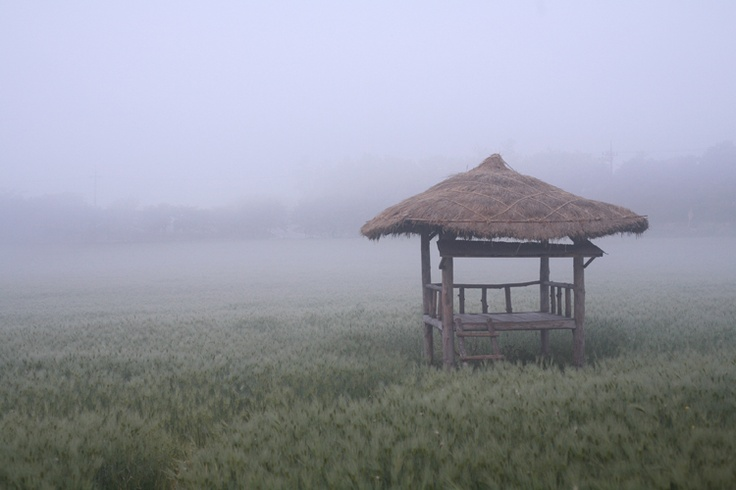 :) looks like a real quiet place...to read, meditate or watch some rice grow...