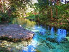 Free Things to Do in Orlando | Florida Travel Guide